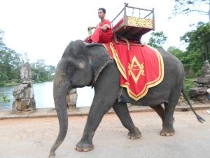 ElephantAW